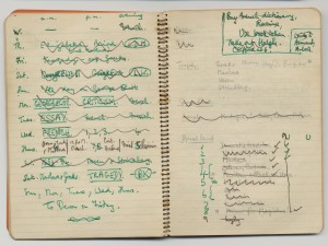 Raymond Williams notebooks