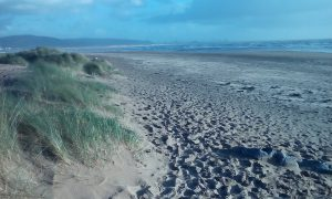 Photo of the beach at Swansea University Bay Campus